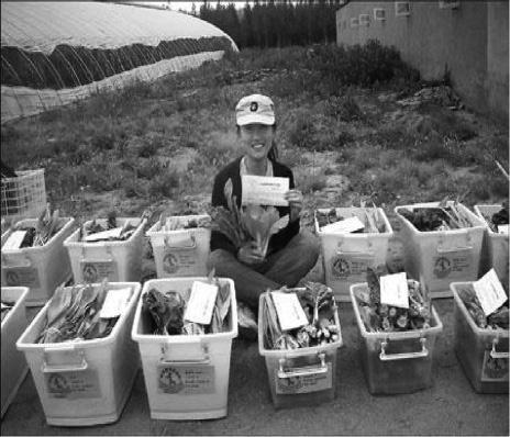 Shi Yan, graduate student and organizerof the Little Donkey CSA near Beijing. Photo courtesy of Little Donkey.