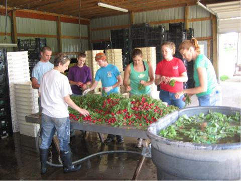 Some of the 50 member-workers at Vermont Valley Farm in Wisconsin, USA.  Photo courtesy of Vermont Valley Farm