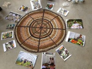 seed_mandala_pictures