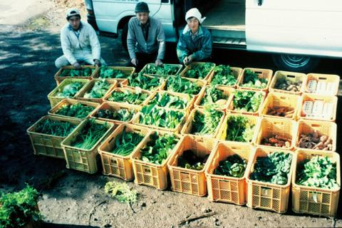 farmer Michiko Uozumi and her helpers display their ready share boxes